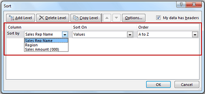 Multiple Level Data Sorting in Excel - Data Sorting Level 1